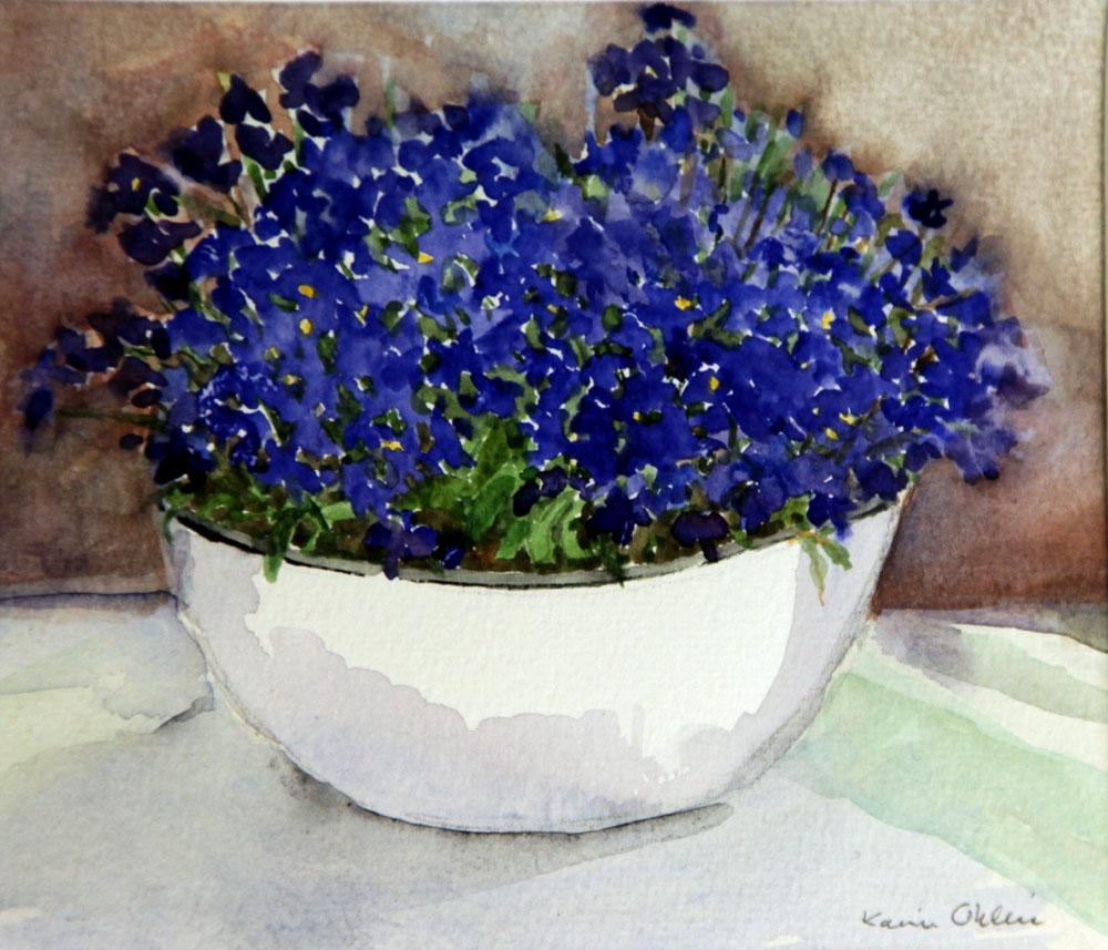 Lobelia, akvarell
